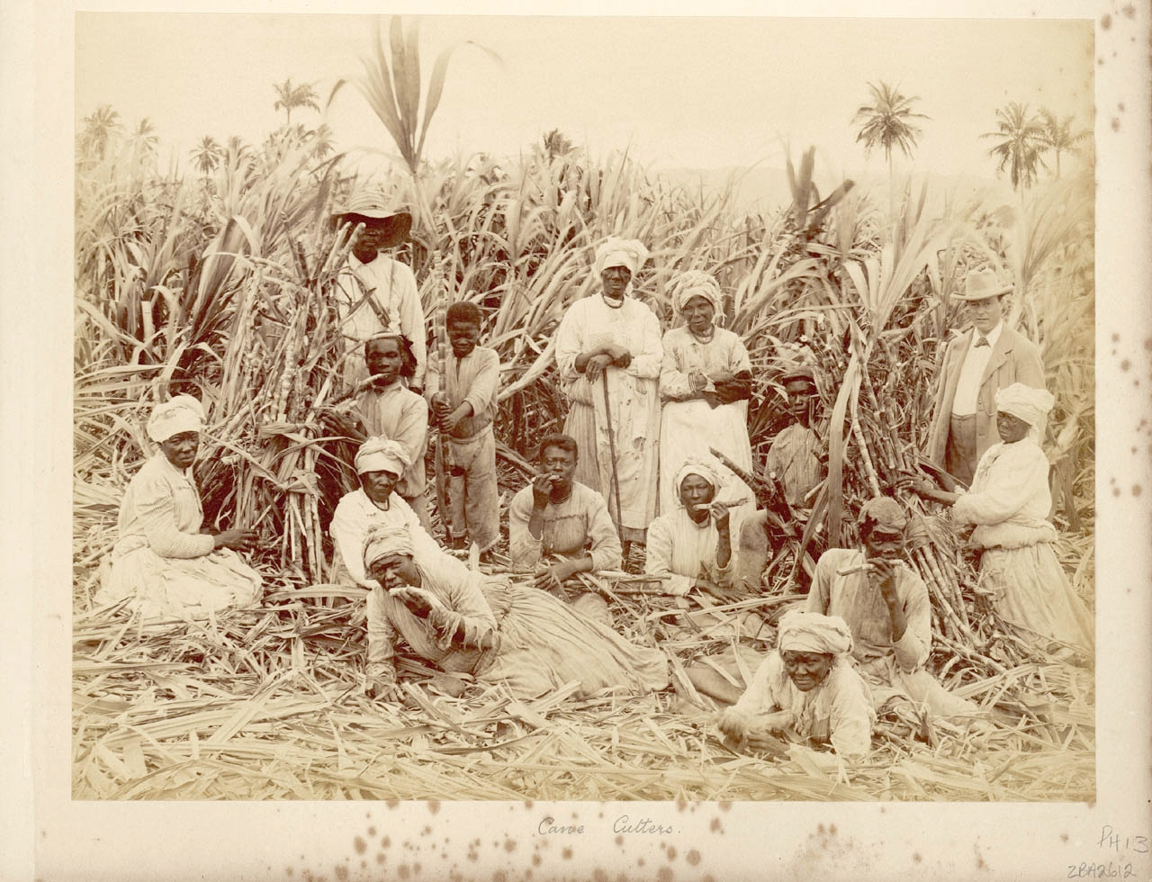 Infanticide As Slave Resistance Evidence From Barbados