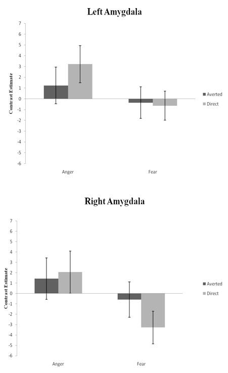 Figure 2: Left and Right Amygdala