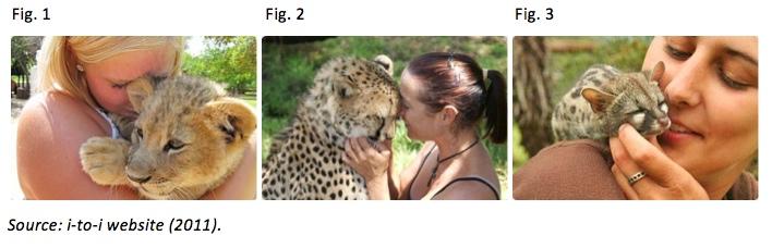 Volunteer Conservationism Images