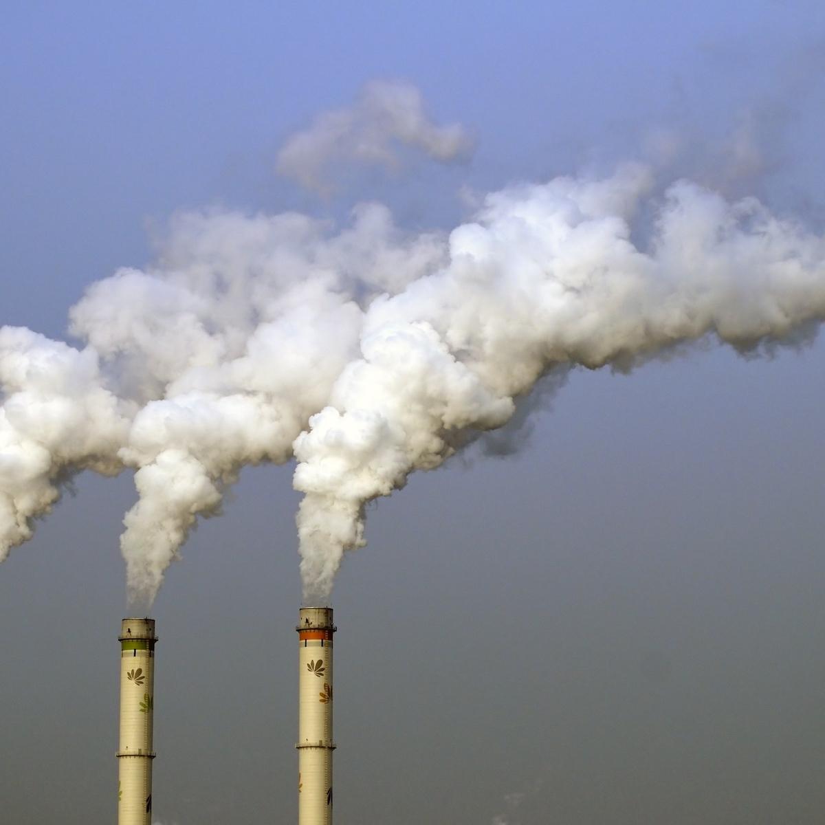 polluting power plants essay