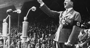 How hitler rose to power essay?