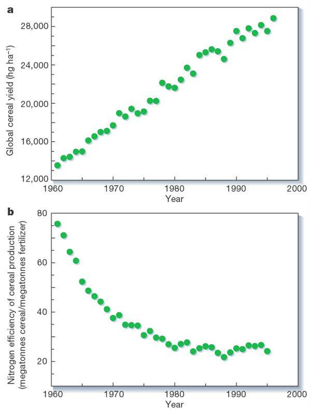 Figure 6: a, Trends in average global cereal yields; b, trends in the nitrogen-fertilization efficiency of crop production (annual global cereal production divided by annual global application of nitrogen fertilizer) Source: Tillman et al, 2002