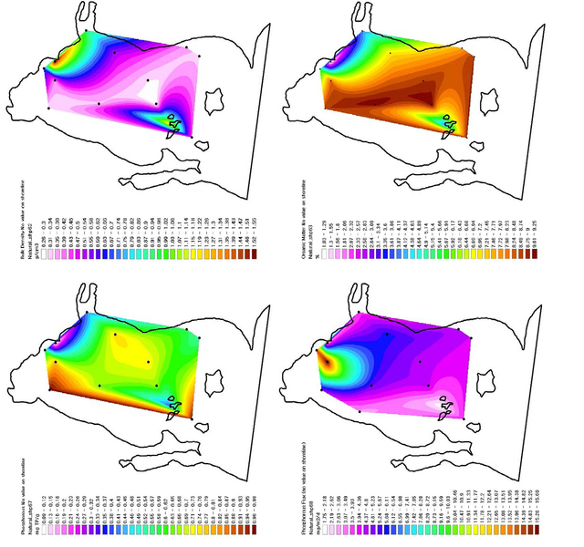 Figure 7. These figures are GIS models of the Western Basin of Lake Erie derived from natural neighbor contouring. (a) The top-left graph shows organic matter bulk density (g/cm3). (b) The top-right graph represents organic matter concentration as percent by mass. (c) The bottom-left map shows phosphorous concentrations as mg (P)/g (water). (d) The last map shows phosphorus flux in mg/m2/d. Data from Matisoff (Online Table 7).